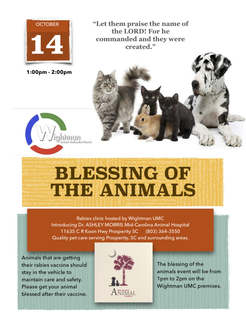 Blessing of the Animals – Wightman UMC